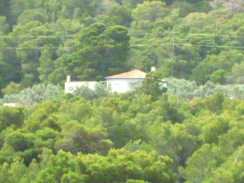 A lovely two-roomed house tucked away among the pine trees on the beautiful island of Hydra.